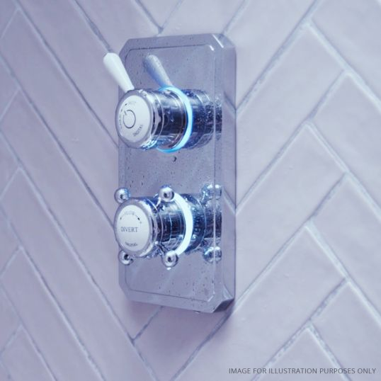 Classic 1910 Duel Outlet Ceiling Mounted Shower Set Low 6